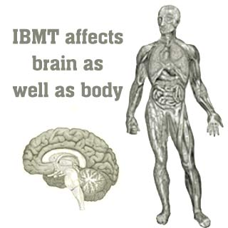 Brain, Body