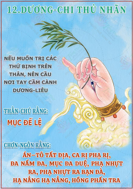 12. Dương Chi Thủ Nhãn